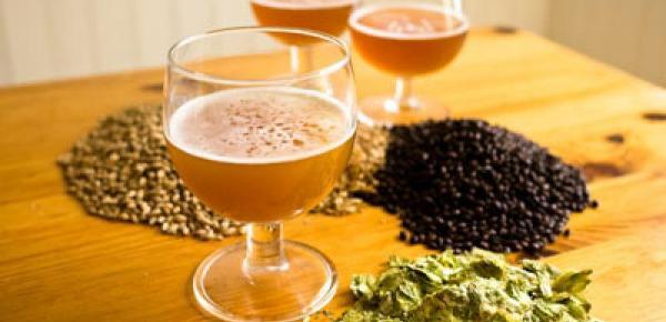 Saiba mais sobre o curso Cerveja Artesanal