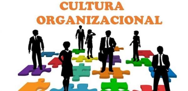 Saiba mais sobre o curso Cultura Organizacional