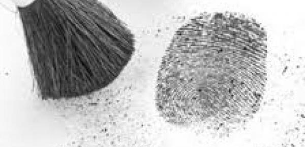 Saiba mais sobre o curso Introdução ao Estudo da Criminologia