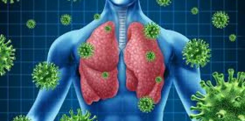 Patologia Respiratória